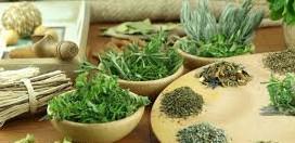 Маски и отвары из трав для сухих волос